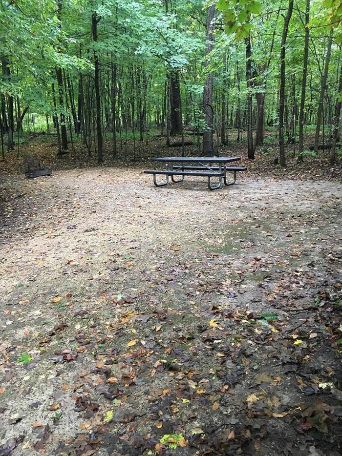 Site 25 ground image (entire photo)