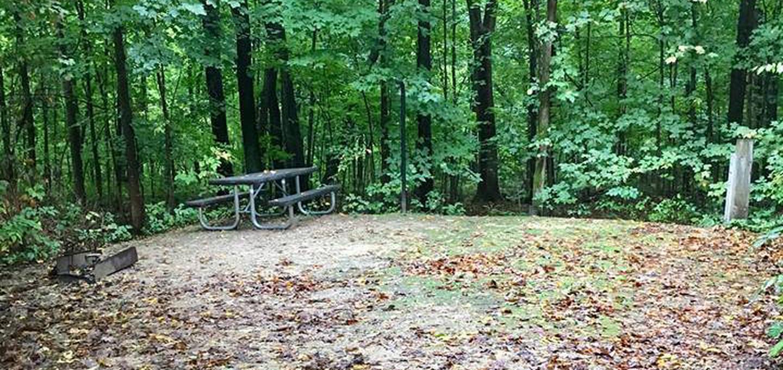Site 30 ground image