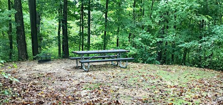 Site 35 ground image