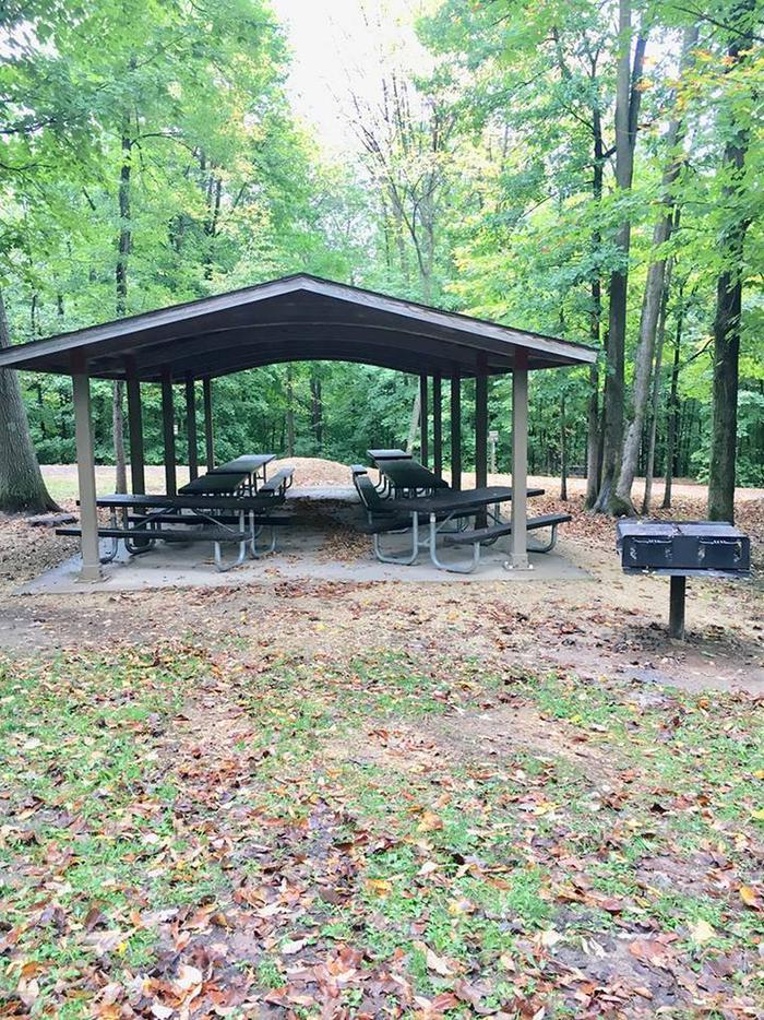 Group loop shelter and grill (closer image)