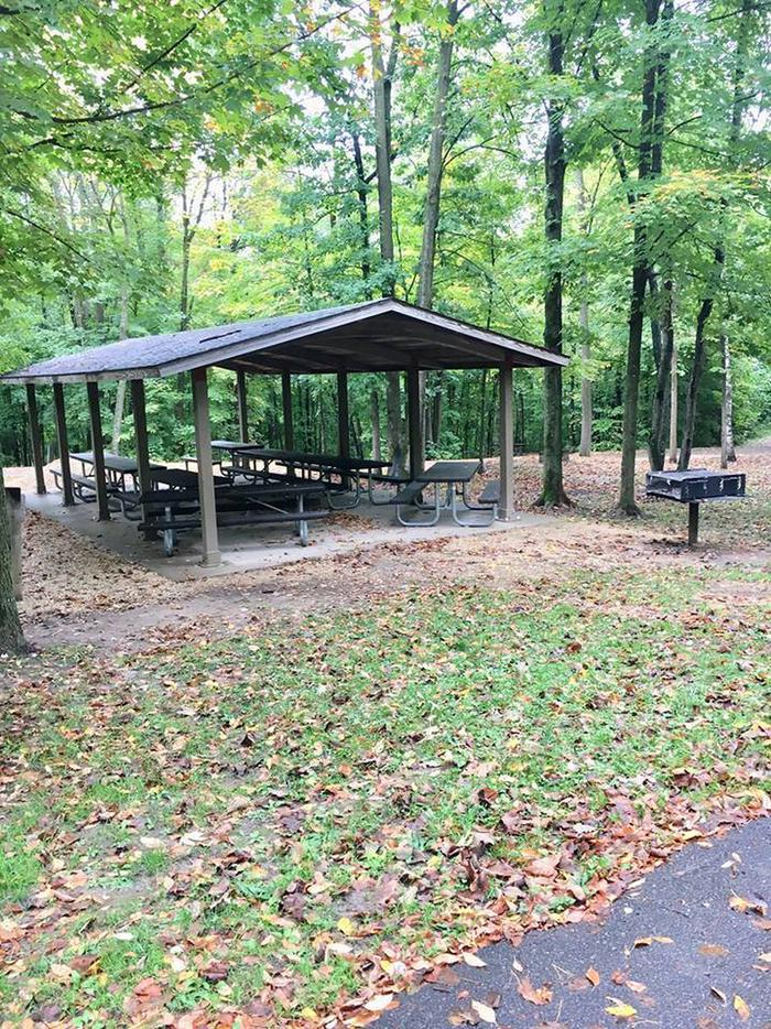 Group loop shelter and grill