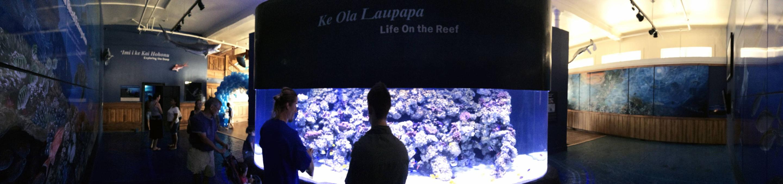 Mokupāpapa Discovery Center for Papahānaumokuākea Marine National MonumentVisitors experience the wonders of the remote Papahānaumokuākea Marine National Monument at Mokupāpapa Discovery Center in Hilo, Hawaii.