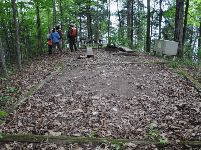 Basswood site 6 campsite