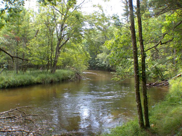 Pere Marquette National Scenic River Watercraft Permits (Huron Manistee)Wild and Scenic Pere Marquette River
