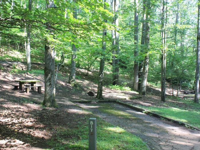 B Loop Site 17 - Tent Nonelectric