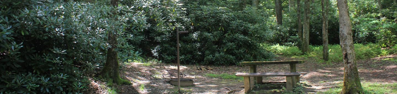 C Loop Site 11 - Tent Nonelectric