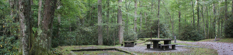C Loop Site 14 - Tent Nonelectric