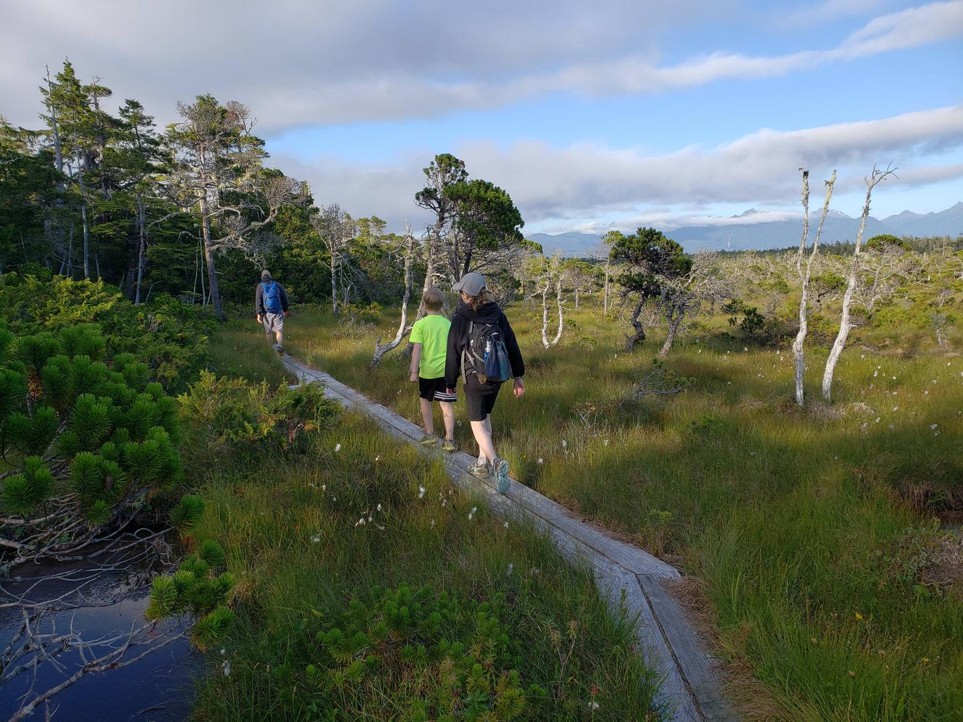 Nearby Mount Edgecumbe Trail