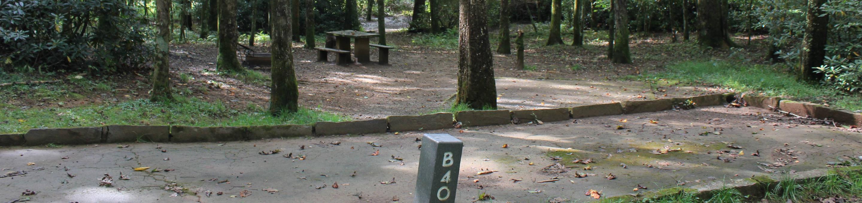 B Loop Site 40 - Standard Nonelectric