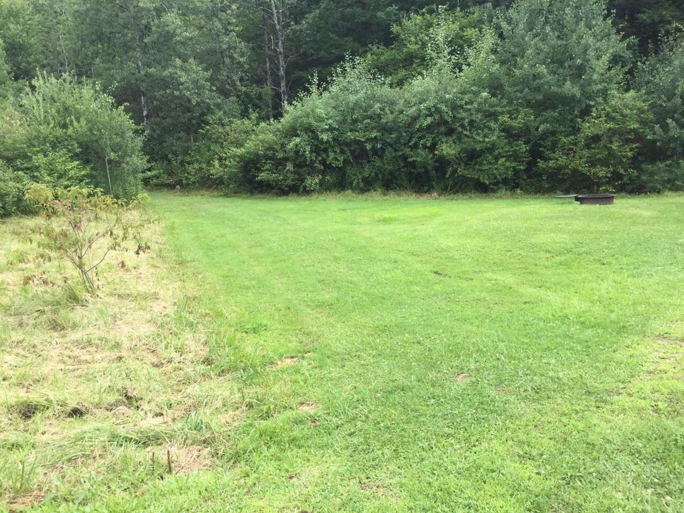 Willow Bay Recreation Area: Site 10
