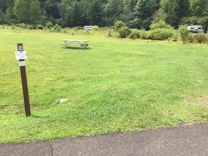 Willow Bay Recreation Area: Site 14