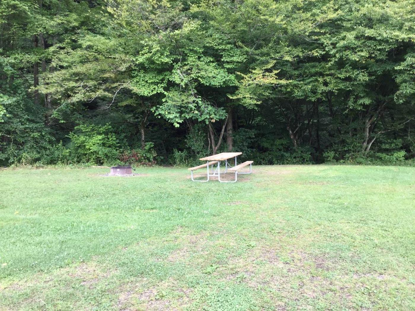 Willow Bay Recreation Area: Site 17