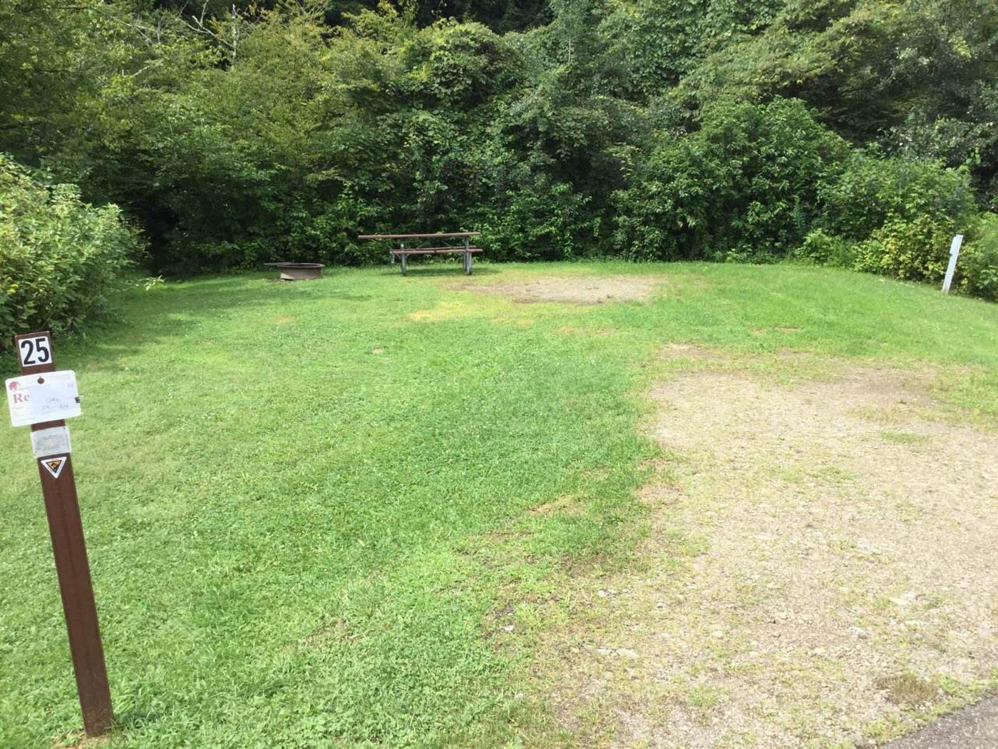 Willow Bay Recreation Area: Site 25