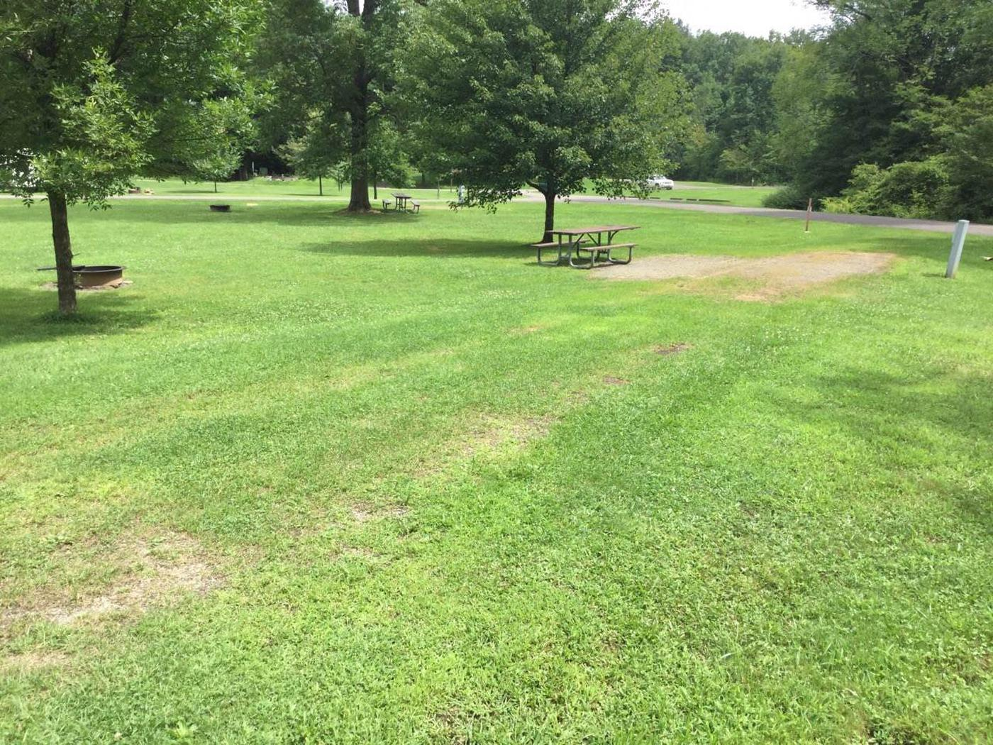 Willow Bay Recreation Area: Campsite: 28