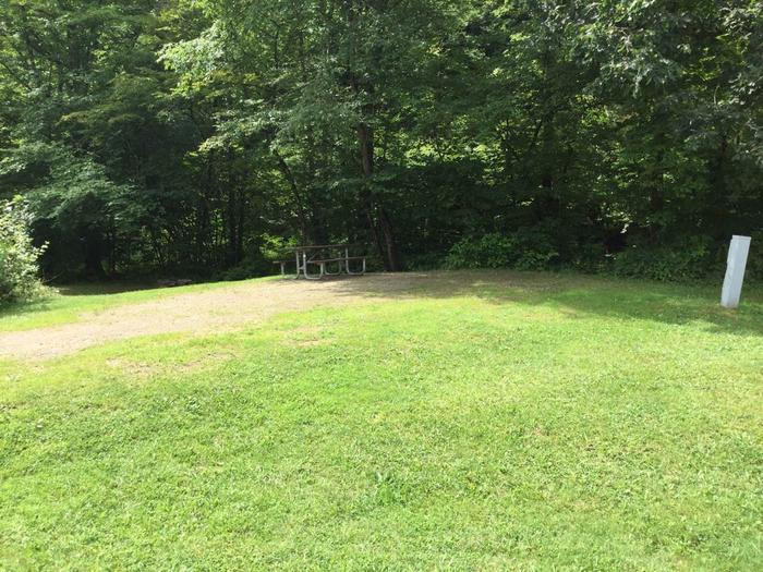 Willow Bay Recreation Area: Campsite: 29