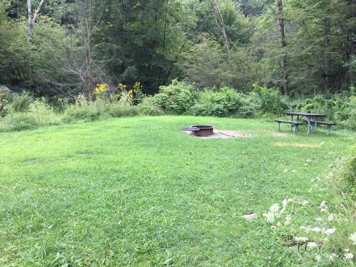 Willow Bay Recreation Area: Campsite 34