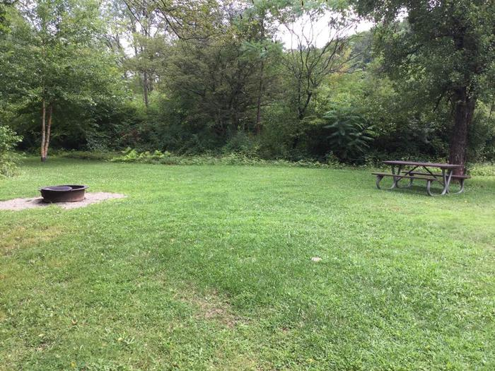 Willow Bay Recreation Area: Campsite 36