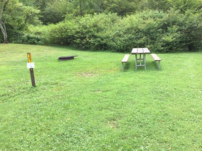 Willow Bay Recreation Area: Campsite 37
