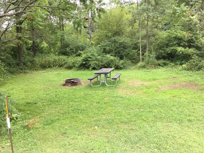 Willow Bay Recreation Area: Campsite 38
