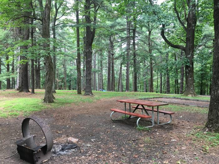 C Loop Site 15 - Tent Nonelectric