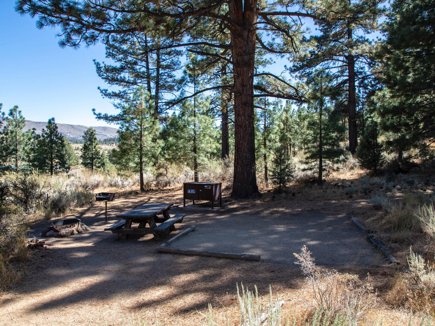 Indian Creek Campground Site #3