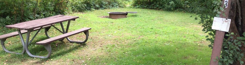 Willow Bay Recreation Area: Campsite 43