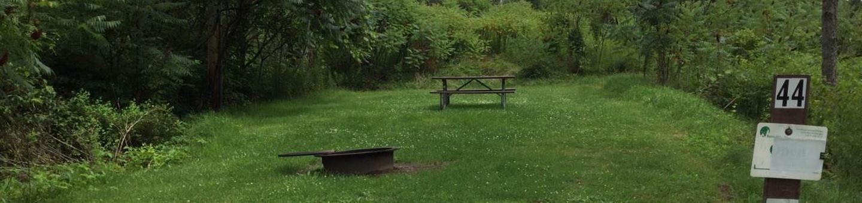 Willow Bay Recreation Area: Campsite 44