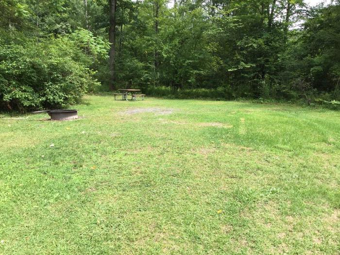 Willow Bay Recreation Area: Campsite 45