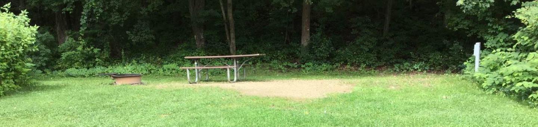Willow Bay Recreation Area: Campsite 46