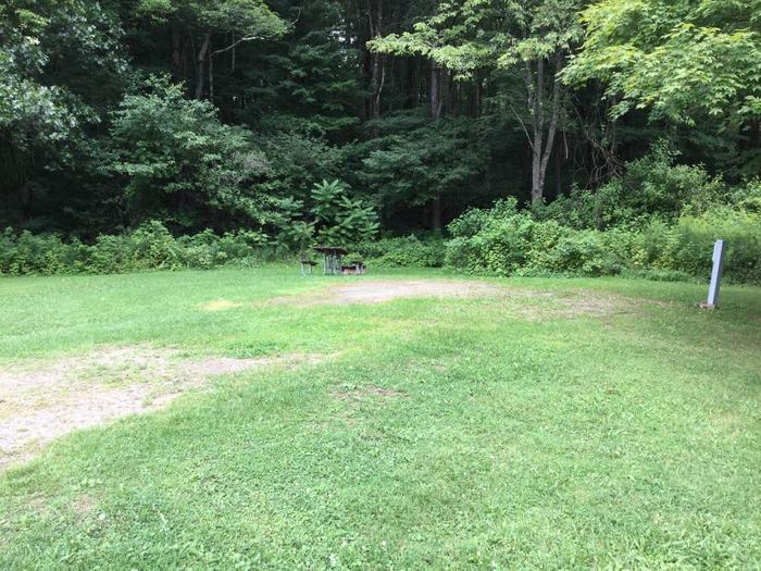 Willow Bay Recreation Area: Campsite 47