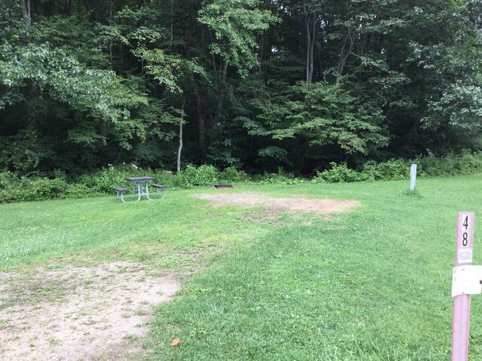 Willow Bay Recreation Area: Campsite 48