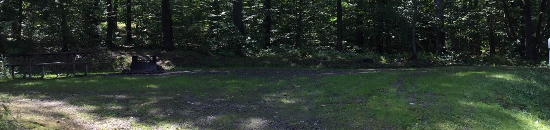 Willow Bay Recreation Area: Campsite 52