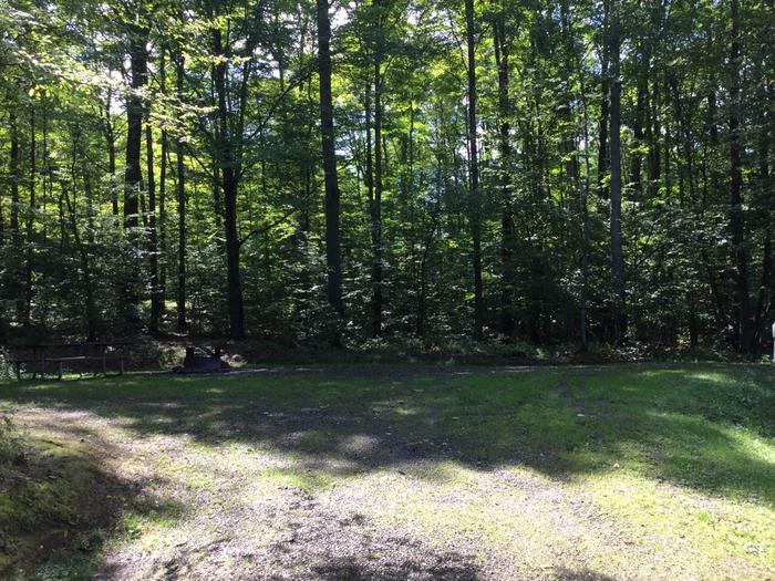 Willow Bay Recreation Area: Campsite 52