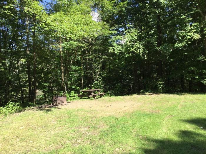 Willow Bay Recreation Area: Campsite 53