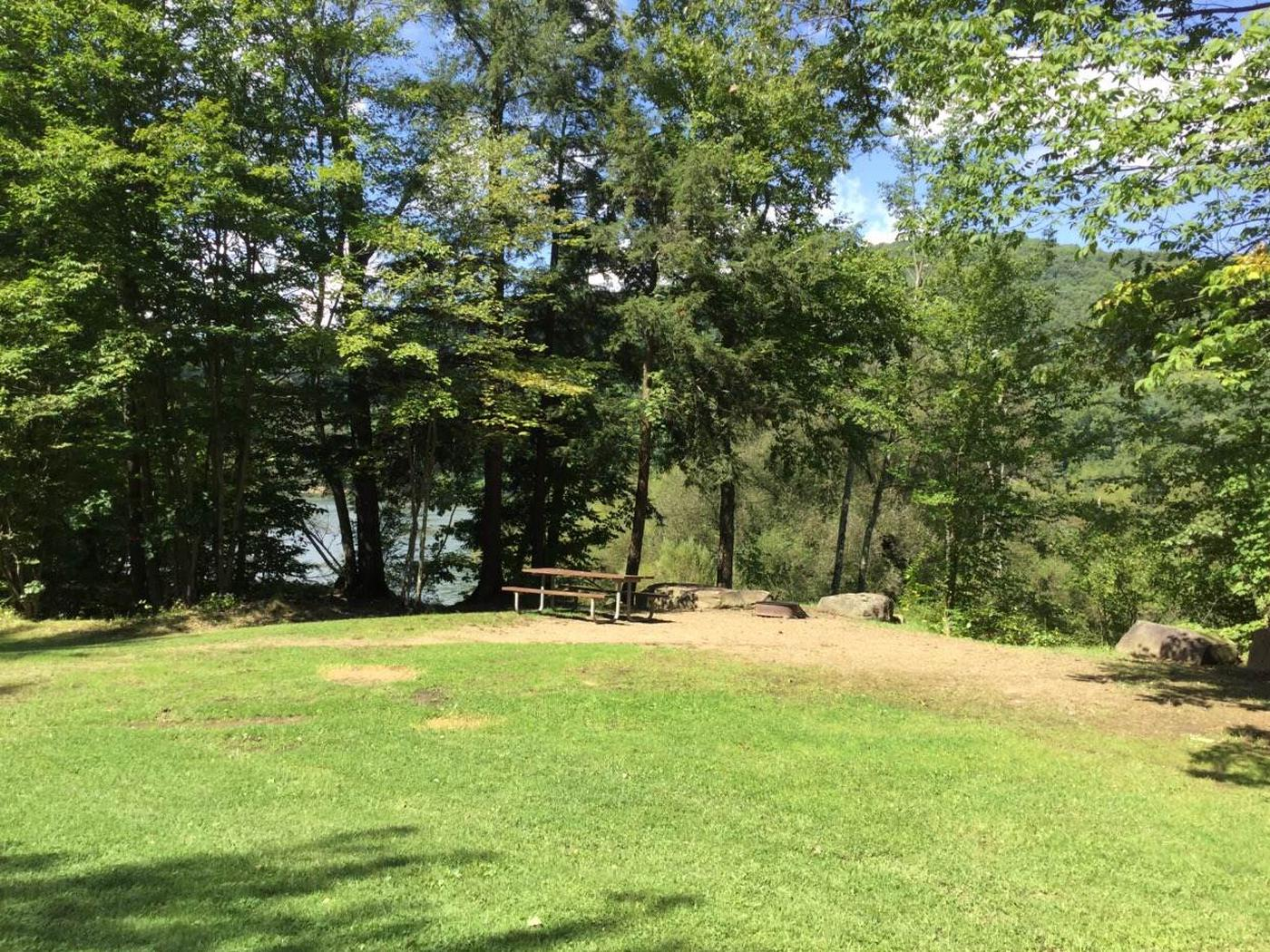 Willow Bay Recreation Area: Campsite 55