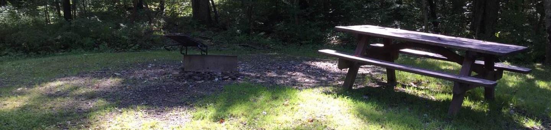 Willow Bay Recreation Area: Campsite 56