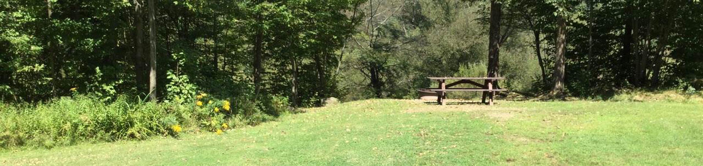 Willow Bay Recreation Area: Campsite 57