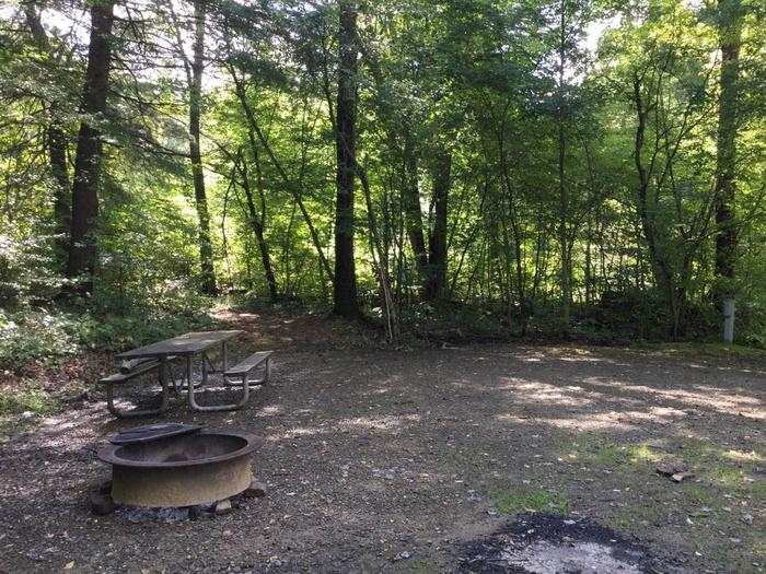 Willow Bay Recreation Area: Campsite 58