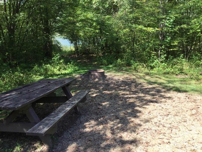 Willow Bay Recreation Area: Campsite 59