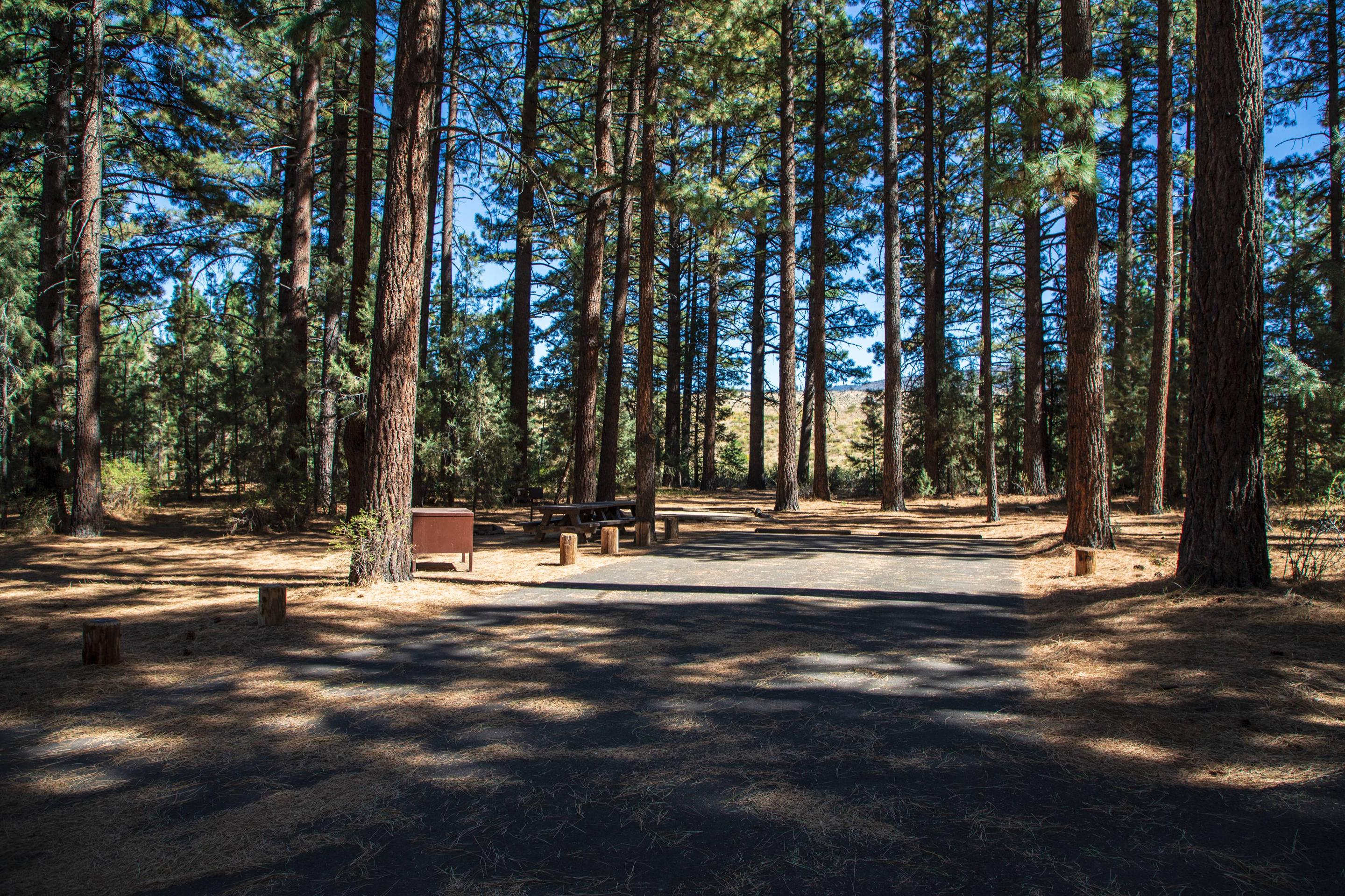 Indian Creek Campground Site #13
