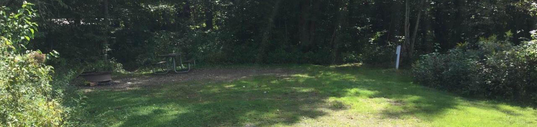 Willow Bay Recreation Area: Campsite 63