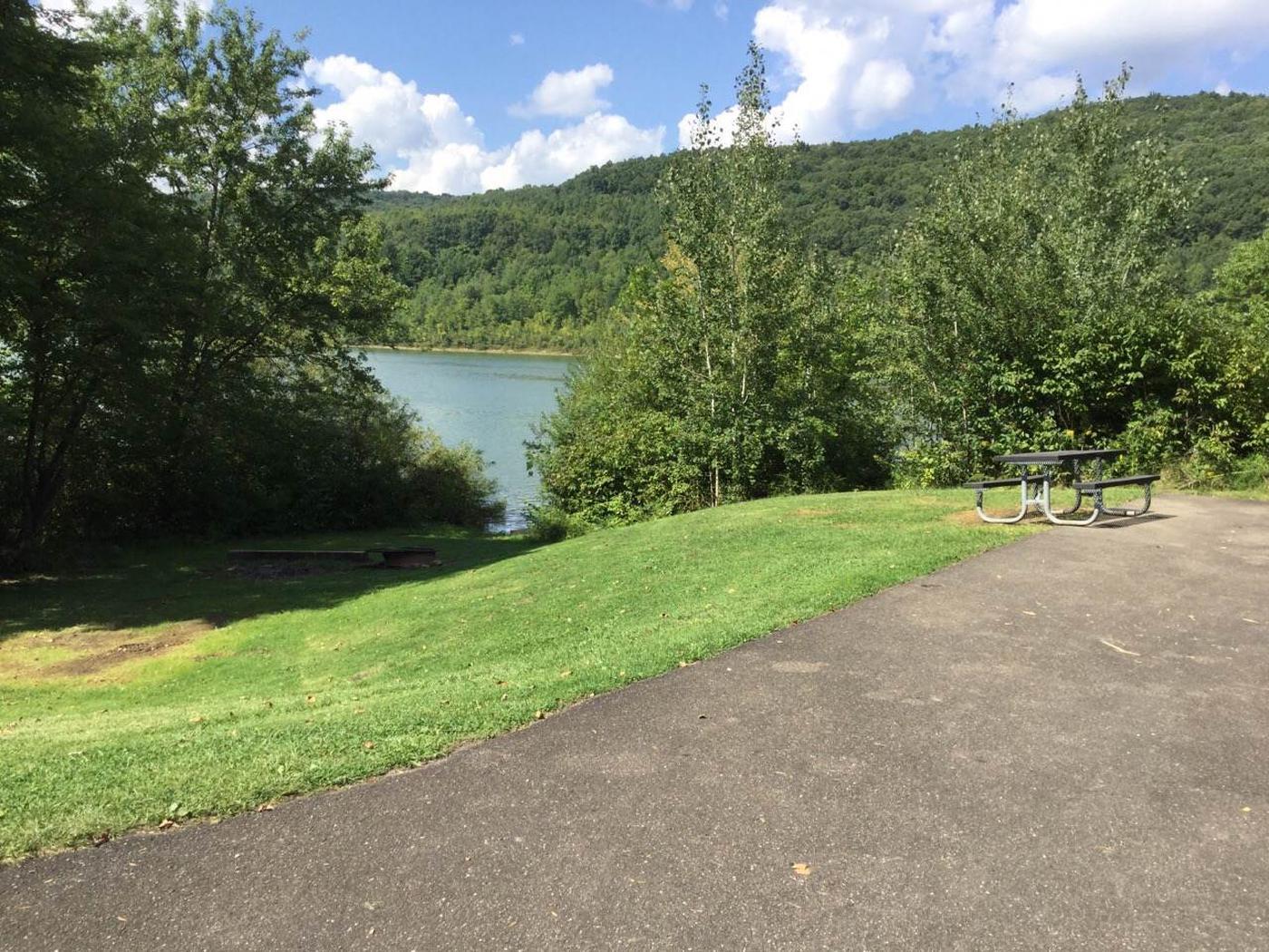 Willow Bay Recreation Area: Campsite 64