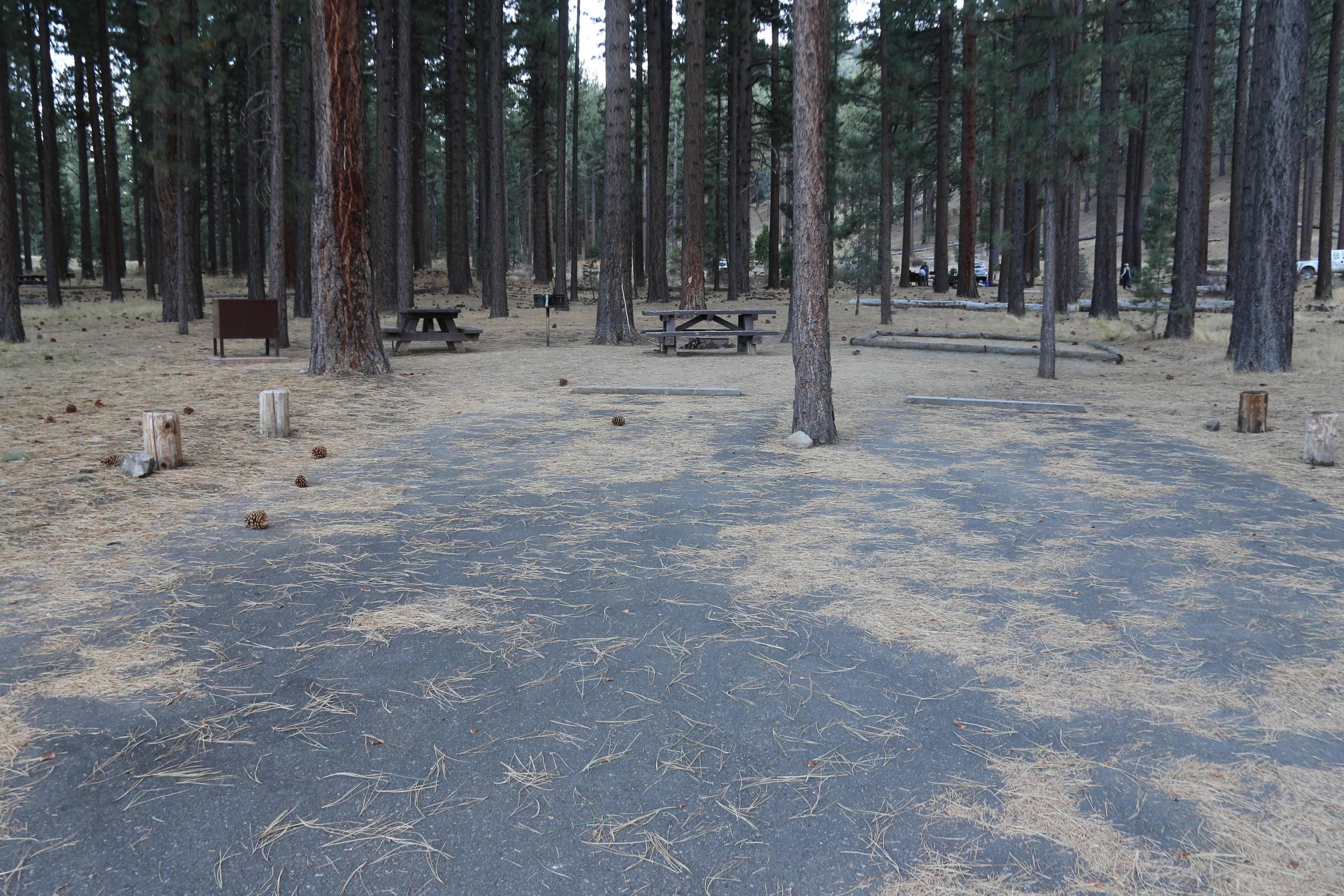 Indian Creek Campground Site #16