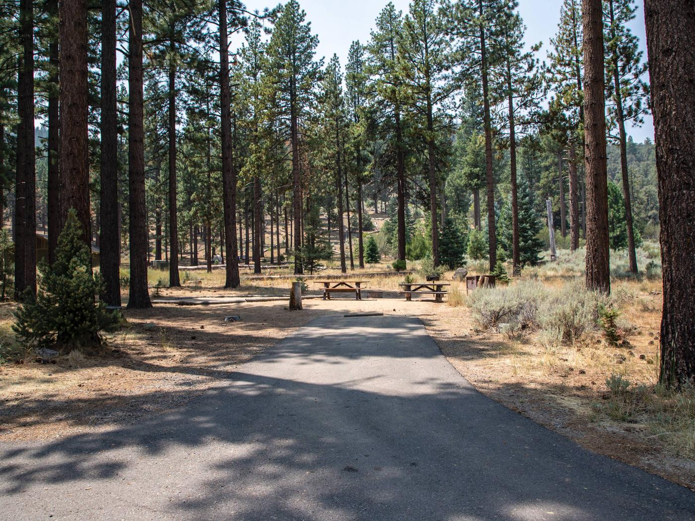 Indian Creek Campground Site #17