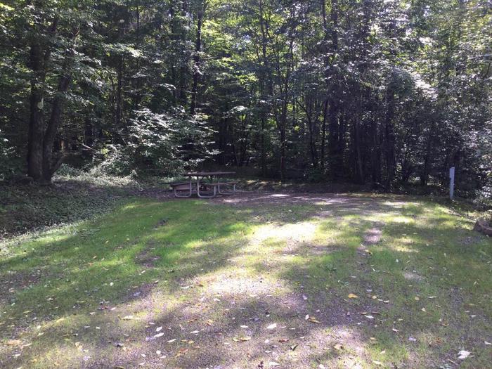 Willow Bay Recreation Area: Campsite 67
