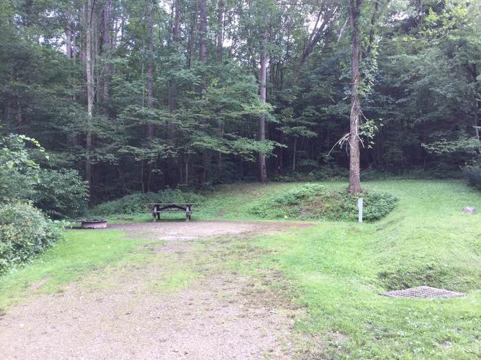 Willow Bay Recreation Area: Campsite 69