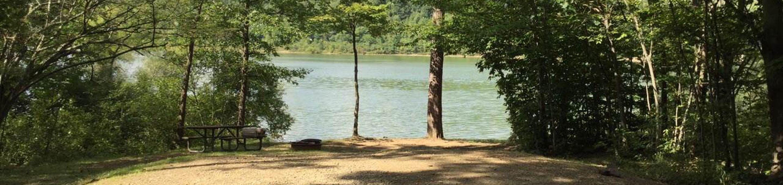 Willow Bay Recreation Area: Campsite 70