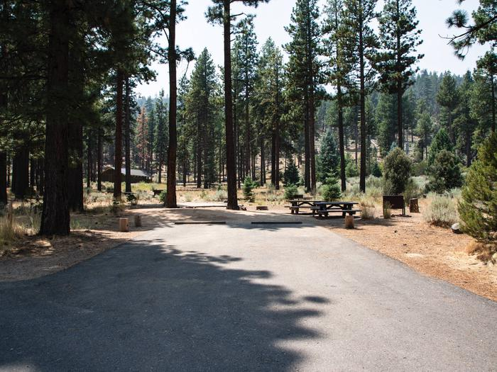 Indian Creek Campground Site #18
