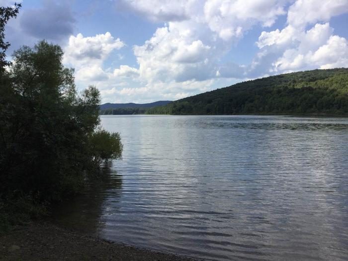 Willow Bay Recreation Area: Campsite 70 Shoreline Photo
