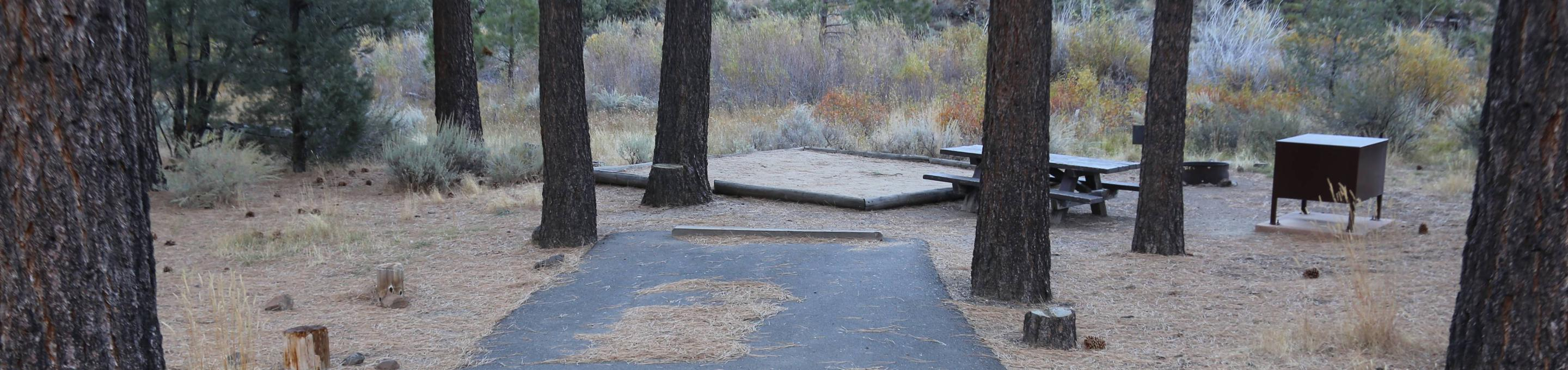 Indian Creek Campground Site #19